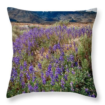 Fields Of Lupine Throw Pillow