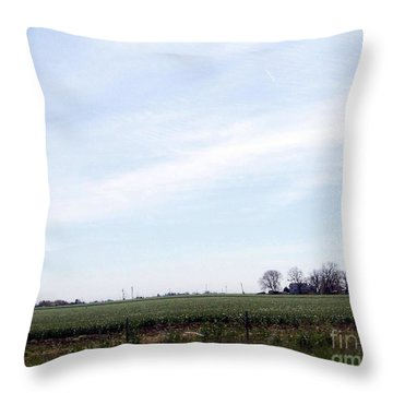 Throw Pillow featuring the photograph Fields Of Source by Bobbee Rickard