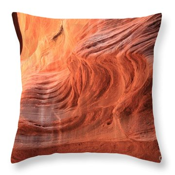 Fiery Buckskin Walls Throw Pillow