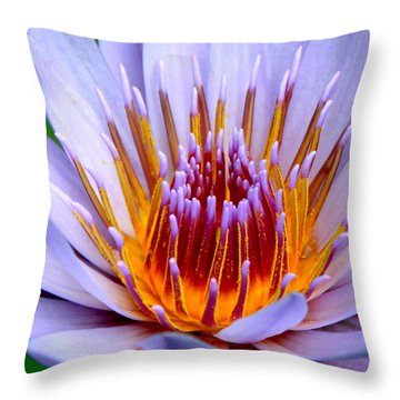 Fiery Eloquence Throw Pillow by Karon Melillo DeVega