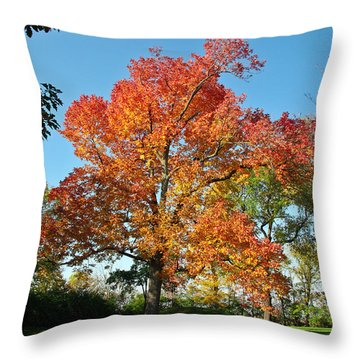 Fiery Fall Throw Pillow