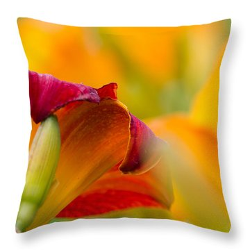 Fiery Flora Throw Pillow by Mary Amerman