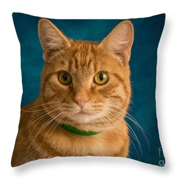 Throw Pillow featuring the photograph Figaro by Janis Knight