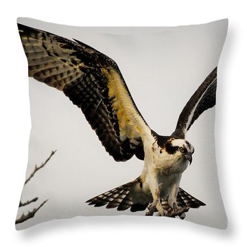 Fight Or Flight Throw Pillow