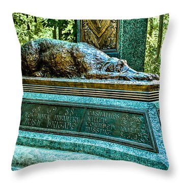 Fighting 69th Irish Brigade Gettysburg Battleground Throw Pillow