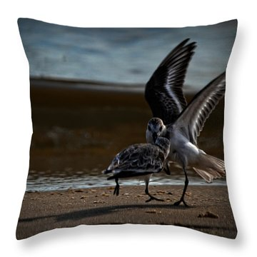 Fighting Sandpipers Throw Pillow