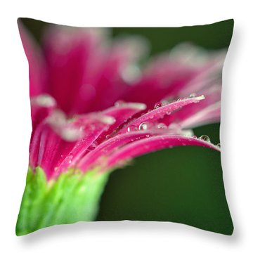 Filled With Glory Throw Pillow by Melanie Moraga