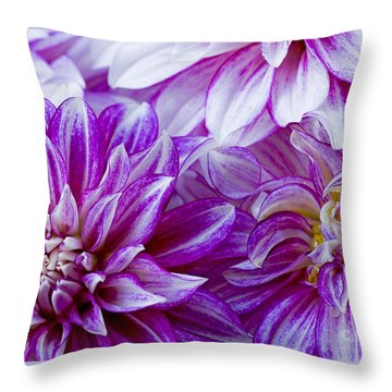 Filling The Frame Throw Pillow by Nick  Boren