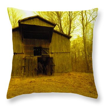 Throw Pillow featuring the photograph Filtered Barn by Nick Kirby