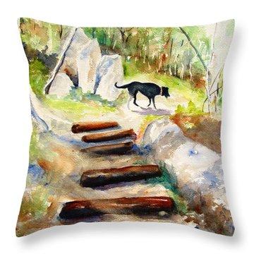 Filtered Sunlight Throw Pillow by Carlin Blahnik
