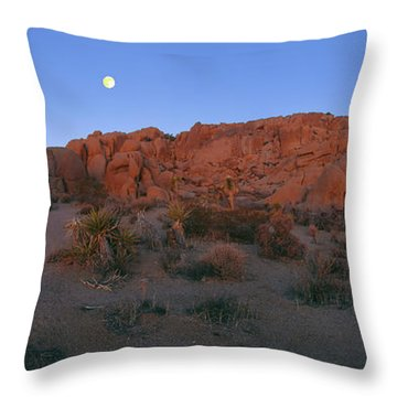 Final Full Moon Set 2014 Throw Pillow