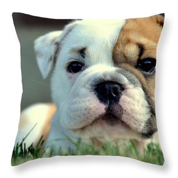 Finally Awake Throw Pillow