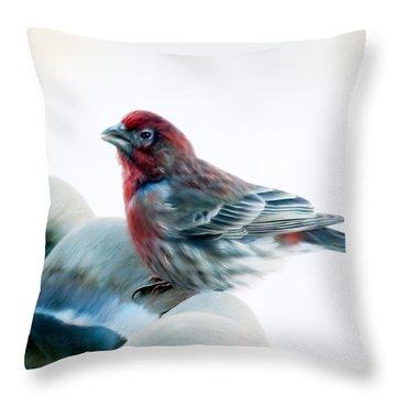 Finch Throw Pillow
