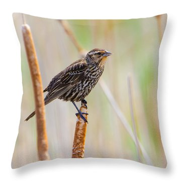 Finding Summer Throw Pillow