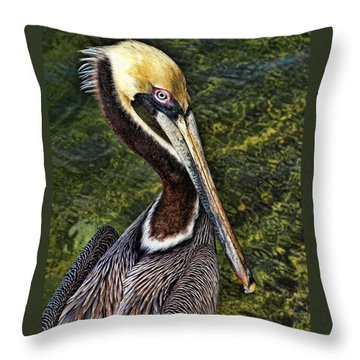 Pelican Close Up Throw Pillow