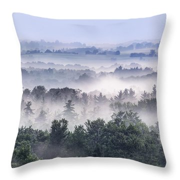 Finger Lakes Morning Throw Pillow