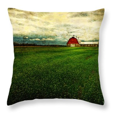 Finished Throw Pillow by Lois Bryan