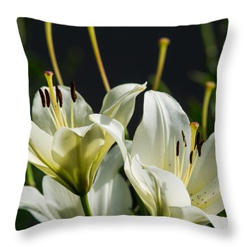Finishing Blossoming - Featured 3 Throw Pillow by Alexander Senin