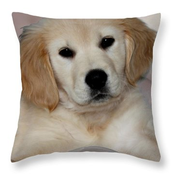 Fiona Throw Pillow by Debbie Hart