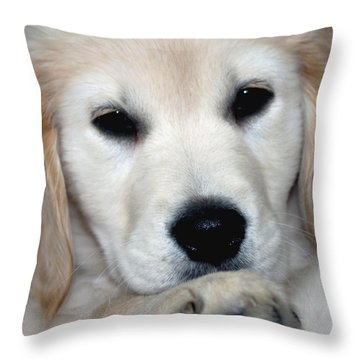 Fiona The English Cream Throw Pillow by Debbie Hart