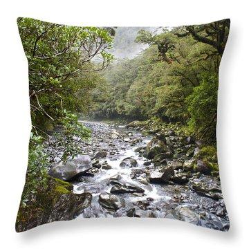Fiordland National Park New Zealand Throw Pillow