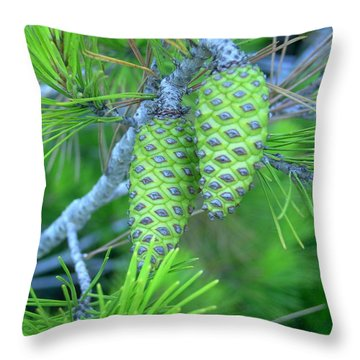 Fir Cones Throw Pillow