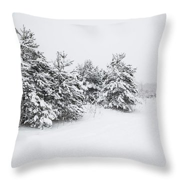 Fir Trees Covered By Snow Throw Pillow
