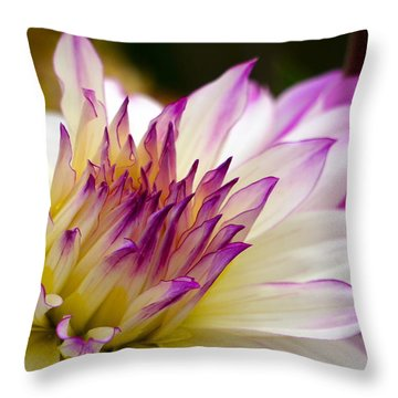 Throw Pillow featuring the photograph Fire And Ice - Dahlia by Jordan Blackstone