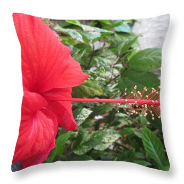 Fire And Ice Hibiscus Throw Pillow