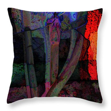 Fire And Ice Throw Pillow by Lin Haring