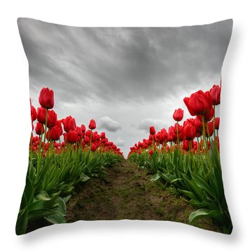 Fire And The Sky Throw Pillow