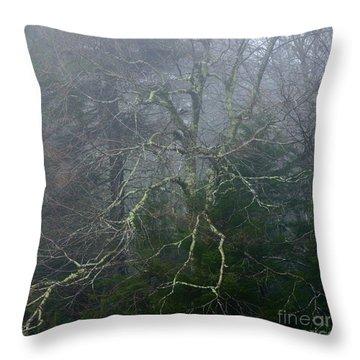 Fire Cherry In Mist Throw Pillow