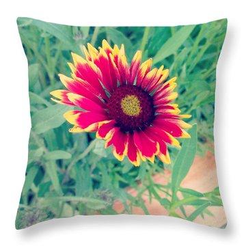 Fire Daisy Throw Pillow