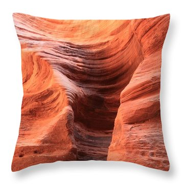 Fire In Buckskin Throw Pillow
