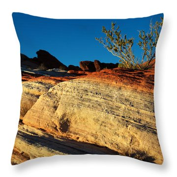 Fire Lines Throw Pillow by Chad Dutson