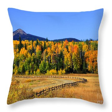 Fire On The Mountain Throw Pillow by Dana Kern