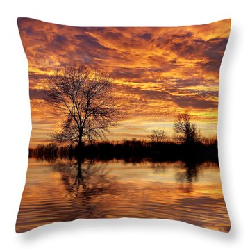 Fire Painters In The Sky Throw Pillow