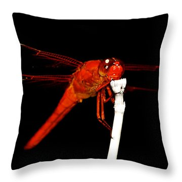 Throw Pillow featuring the photograph Fire Red Dragon by Peggy Franz