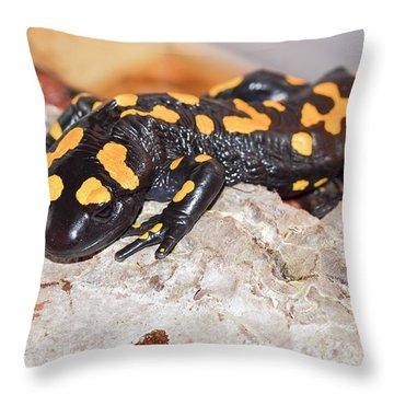 Salamanders Throw Pillows