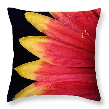 Throw Pillow featuring the photograph Fire Spokes by Paul Rebmann