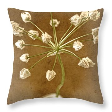 Firecracker Throw Pillow by Peggy Hughes