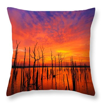Fired Up Morn Throw Pillow