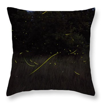 Firefly Traces On A Summer Night Throw Pillow