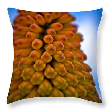 Firepoker Throw Pillow