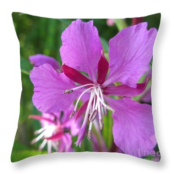 Fireweed 1 Throw Pillow