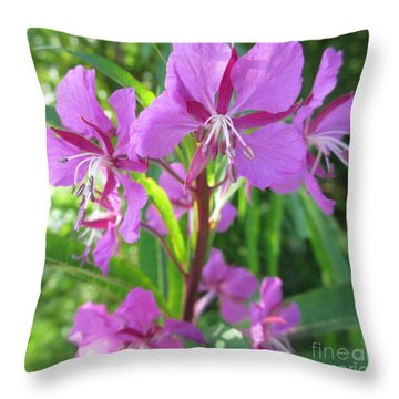 Fireweed 3 Throw Pillow