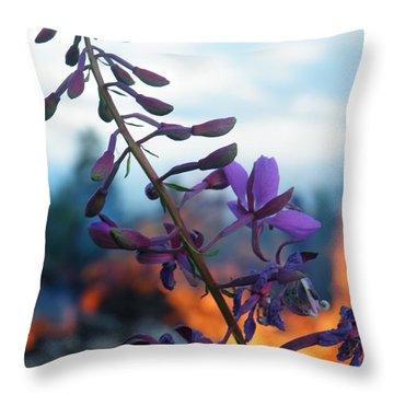 Fireweed Number Five Throw Pillow by Brian Boyle