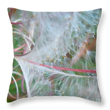 Fireweed Number One Throw Pillow by Brian Boyle