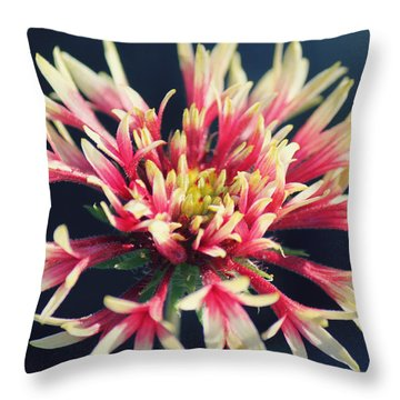 Firework Blooms Throw Pillow by Melanie Lankford Photography