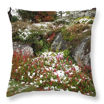 First Autumn Snow Throw Pillow by Barbara McDevitt